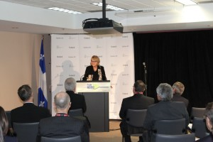 Deputee de la Porte, Mme. Nicole Ménard speaking at the press conference.